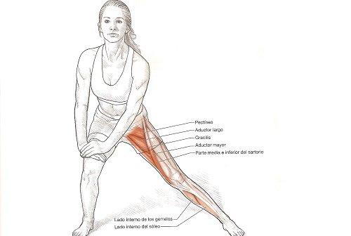 Estiramientos para corredores: aductor de la cadera con flexión de ...